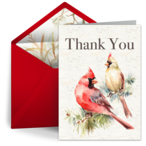 Winter Cardinal Thank You card image