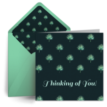 Succulents card image