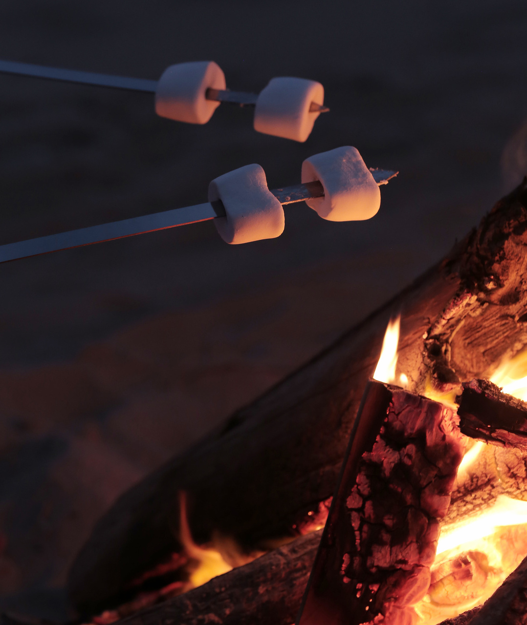 10 Creative S'mores Combinations