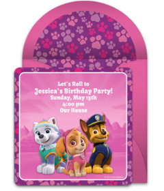 PAW Patrol Skye Friends