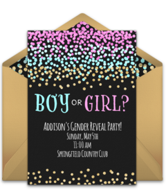 Free Gender Reveal Party Online Invitations | Punchbowl