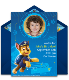 NEW Pack of 10 Paw Patrol Themed Birthday Card Party Invitations