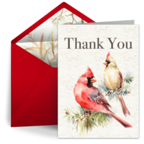 Red Cardinal Thank You card image