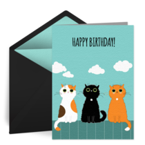 Cool Cat Birthday card image