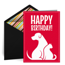 Dogs and Cats Birthday card image